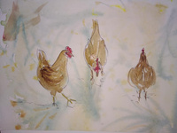 Watercolour Chickens